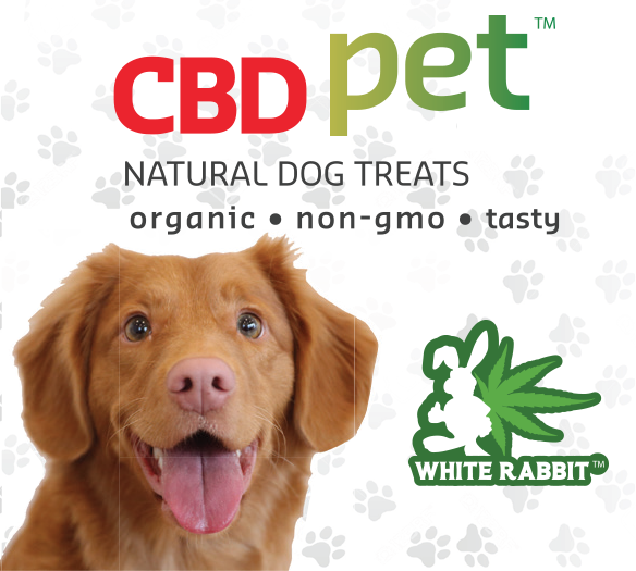 CBD Dog Treats Calming Biscuits